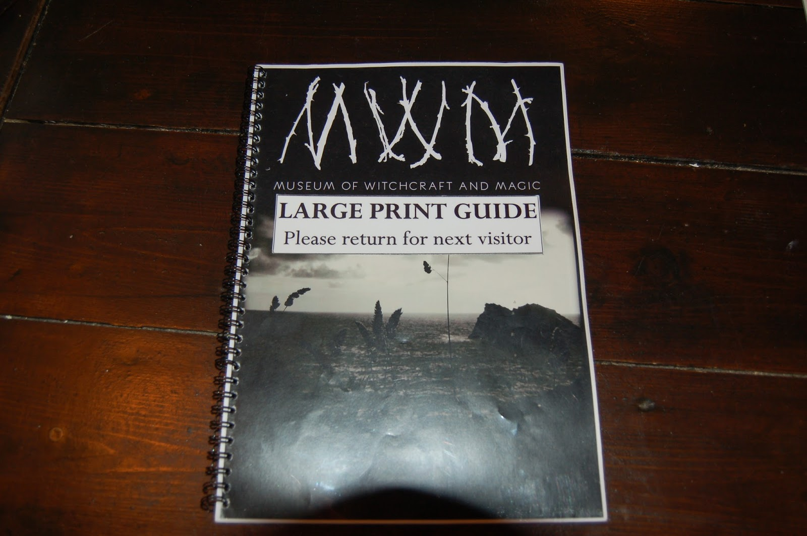 New large print guide available