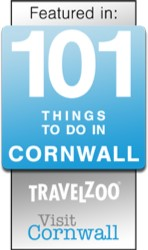 Museum is one of the top 101 things to do in Cornwall
