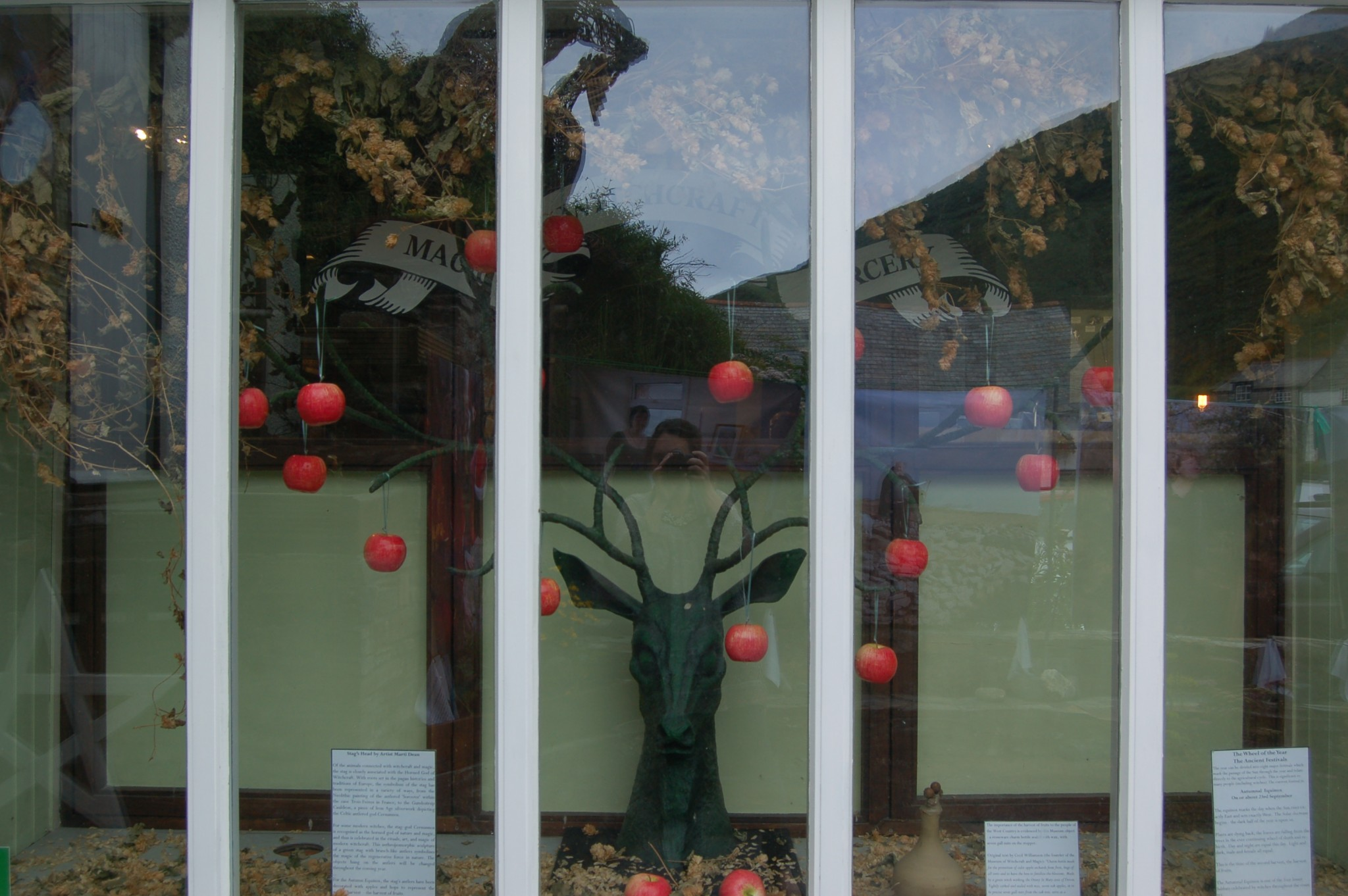 Autumn Equinox Window Display