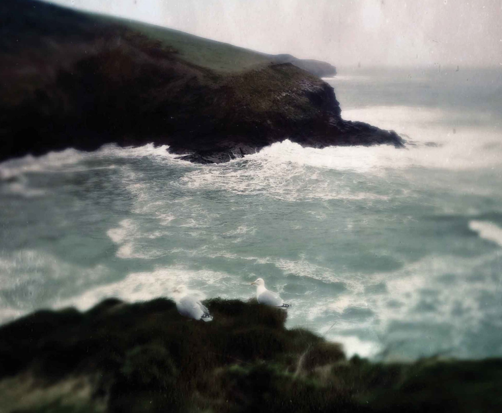 Guided walks around Boscastle with folklorist and author Steve Patterson